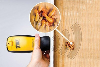 Termite Detector